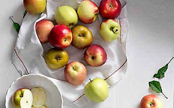 8 heimische Apfelsorten