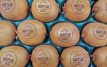 Hofer verbannt Plastik und scannt Obst
