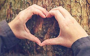 5 Tipps, mit denen Sie Ihr Herz stärken