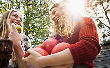 5 Genussmärkte im Herbst