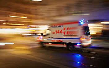 Dackel beißt Zweijährige in Perchtoldsdorf ins Gesicht