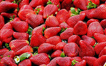 Erdbeeren aus Polen: Hepatitis A auch in Österreich