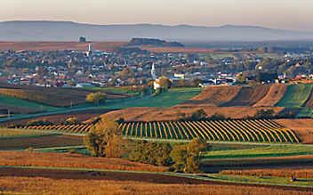 4 Gründe, warum es uns ins Mittelburgenland zieht