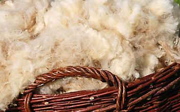 Warum Wolle besser wärmt als Synthetik