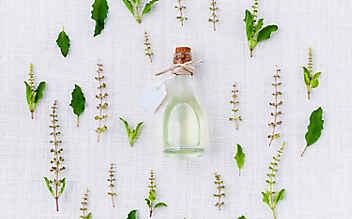 Aromatische Kräuteröle selber machen