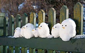 Es muss nicht immer ein Schneemann sein