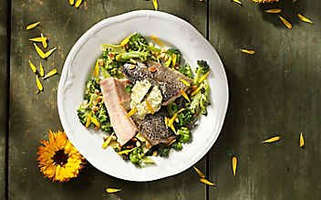 Forellenfilet auf Brokkoli