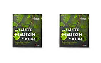 Die sanfte Medizin der Bäume