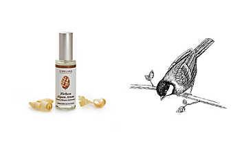Zirbenkissen Aromaspray