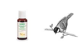 Insekten-Hautschutzöl