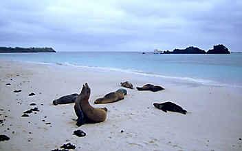 Faszination Inselwelt