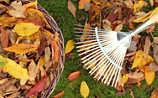 Käfers Gartentipps: So kompostieren Sie Herbst-Laub richtig