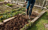 März-Gartentipp Nr. 3: Beete schonend umgraben