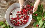 5 sommerliche Rezepte mit Kirschen