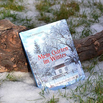 Mein Garten Im Winter Bei Servus Com