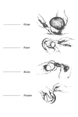 Pilzmesser mit Bürste